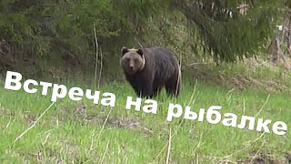 Встреча с медведем на рыбалке. ПРИКОЛ. Bear on the river