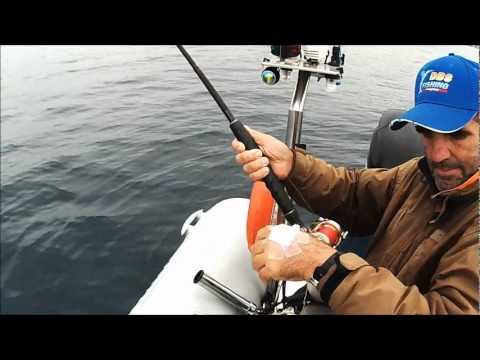 squid dentex ΚΑΛΑΜΑΡΙΑ Ν4 ΚΑΙ ΜΕΤΑ Η ΣΥΝΑΓΡΙΔΑ Ν75 sotos fishing.wmv