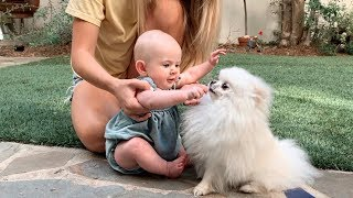 Baby Posie and Our Puppy Share Cutest Interaction Ever Caught On Camera!!!