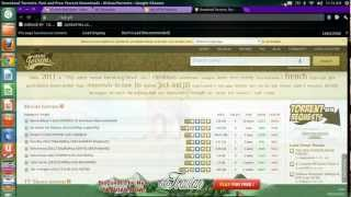 Easiest Method To Open Blocked Torrent Sites In India(permanently)