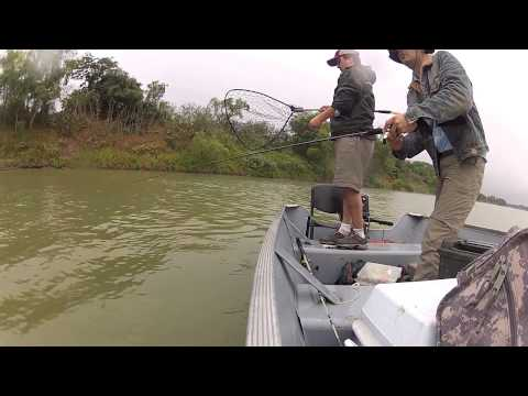Pesca de Robalo en el Panuco Tampico Mexico