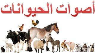 أصوات الحيوانات للأطفال
