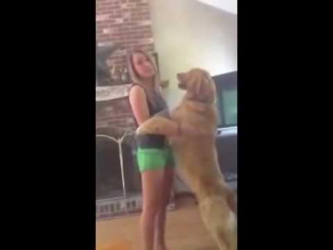 Dog Tongue Challenge