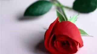 I LOVE YOU - SOPHIE