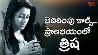 Actress Trisha in Trouble over Jallikattu #FilmGossips