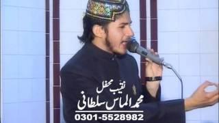 almas sultani shan_e_ syeda zahra