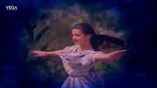 Kukku Kukku Kuyile Video Song | Poo Poova Poothirukku Movie | Amala Superhit Video Song