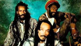 Israel Vibration: Perfect Love and Understanding.wmv (Reggae)