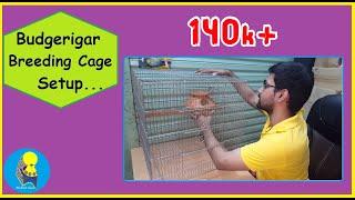 IDEAL CAGE SETUP FOR BREEDING BUDGERIGAR(বাজেরিগারের আদর্শ ব্রিডিং কেইজ/খাচা সেটআপ)