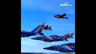 الرياضيان المتطرفان يشاركان في العرض الجوي مع المقاتلات|CCTV Arabic