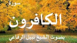 سورة الكافرون بصوت نبيل الرفاعي