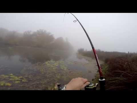 видео ловля щуки на мелководье
