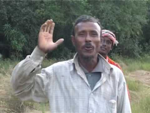 Xxx Mp4 সুন্দরবন ভ্রমন C Discover The World Biggest Mangrove Forest Sundarban Part 03 3gp Sex