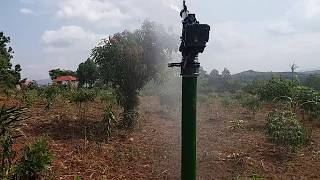 Coffee semi movable sprinkler Irrigation SIRACO