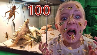 100 Layers of Crickets! Trinity vs Mom (Crickets Escaped in Our House!!!)