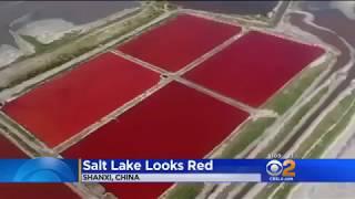 OMEN! LAKE IN SHANXI, CHINA TURNS BLOOD RED!