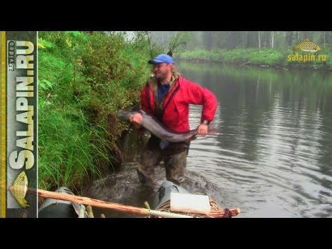 выживание в тайге рыбалка