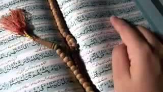 رائعه القرآن الكريم بصوت نبيل العوضي