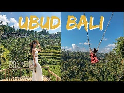 Where to go in UBUD BALI Monkey Forest Bali Swing Rice Terraces Waterfalls