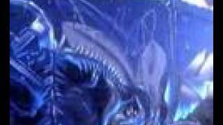 C3P IMF Fresque Alien février 2008