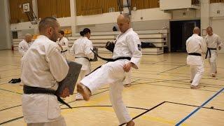 Zen in Budo, motivation (Kimura Shukokai karate training 武道 -demo) Finland. 空手