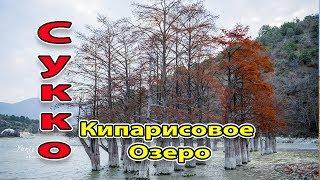 Анапа. Сукко. Прогулка к кипарисам Декабрь 2017