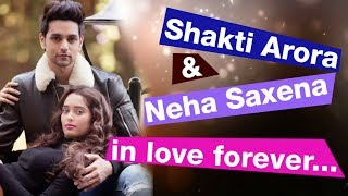 12 pics of Shakti Arora and Neha Saxena that spell #CoupleGoals