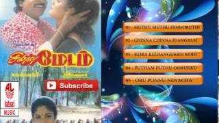 Tamil Old Songs | Chinna Madam Full Songs | Tamil Hit Songs | Ramki,Vineetha,Nadhiya