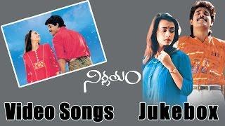 Nagarjuna Birthday Special    Nirnayam Movie Video Songs Jukebox    Amala