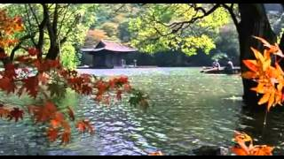 Spring, summer, fall, winter -- and spring Movie Trailer (2003) Drama