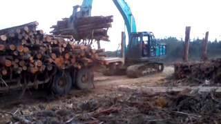 Excavator muat tronton