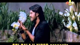 Meghadheera-Panchadara Bomma.MPG