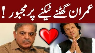 Govt agrees to appoint Shahbaz Sharif as chairman of PAC