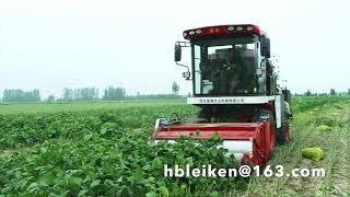 Edamame,  Green Bean, Green Soybean Harvester