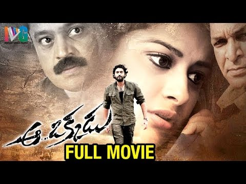 Aa Okkadu Telugu Full Movie | Ajay | Madhurima | Sunil | Nasser | Mani Sharma | Indian Video Guru