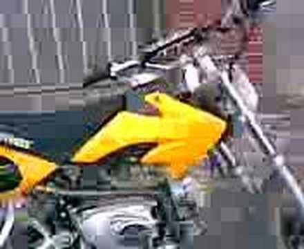 dt dt rs pit bike