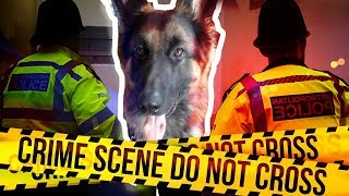 THE POLICE STOLE MY DOG