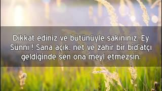 Şeyh Muhammed b. Hâdî el-Medhalî : Ey Sünnî ! Dikkat et !