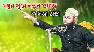 মধুর সুরে যে ওয়াজ শুনে কলিজা ঠান্ডা | Bangla Waz Mahfil | Hafez Maulana Habibullah Mesbah