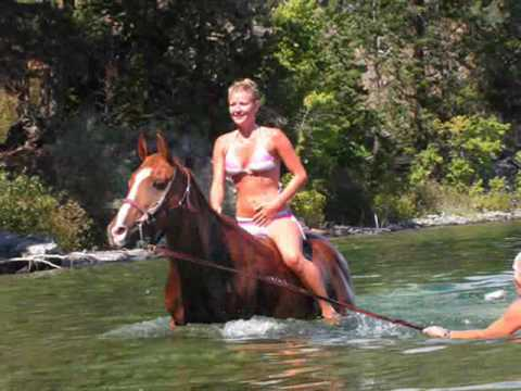 Swimming with horses the Real Deal