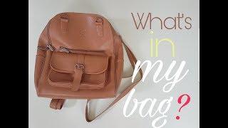 ♡ BỘ SƯU TẬP TÚI ♡  || ♡ BAGS COLLECTION ♡ || ♡ WHAT'S IN MY BAG? ♡ || ♡ TRONG TÚI GÀ CÓ GÌ? ♡
