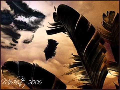 Reflexiones de vida El saco de plumas Mariano Osorio