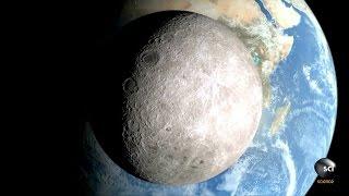 Did the Moon Create Life on Earth?