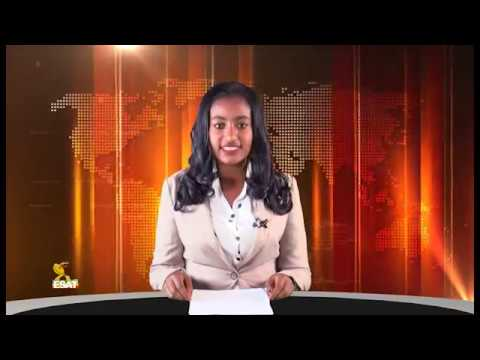 Xxx Mp4 ESAT Addis Amharic NEWS Nov 7 2018 3gp Sex