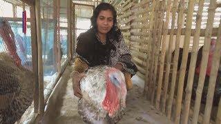 টার্কি মুরগির খামার করে স্বাবলম্বী নাছিমা আক্তার, Nasima self reliant by turkey chicken farm