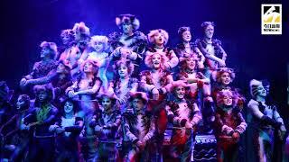 百老匯音樂劇《猫》  台北首場開演