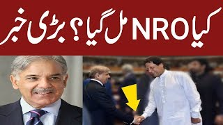 PM Imran Khan Gave NRO To Shehbaz Sharif