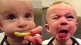 Funny Videos That Make You Laugh So Hard You Cry Funny Baby Videos part 1
