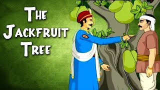 Akbar Birbal Stories | The Jack Fruit Tree | Hindi Animated Stories For Kids | Masti Ki Paathshala