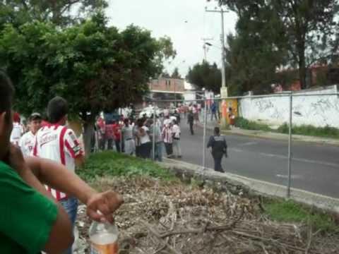 Bronca Necaxa vs pumas Morelos Estadio Centenario